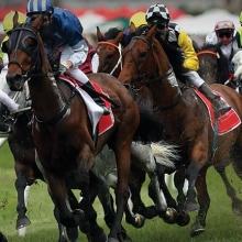 ASX Thomson Reuters Race Day