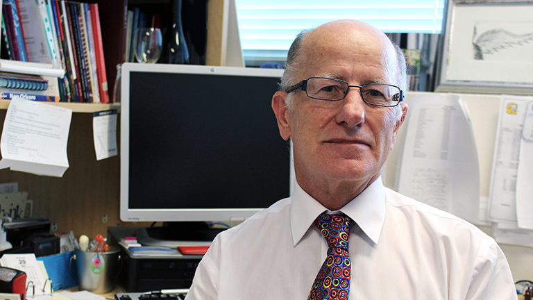Funding Boost For Rectal Cancer Study Hmri