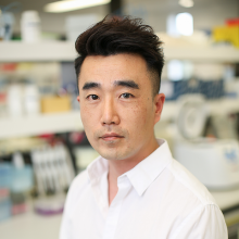 New MHF-funded Fellowship to fight brain cancer | Dr Julius Kim