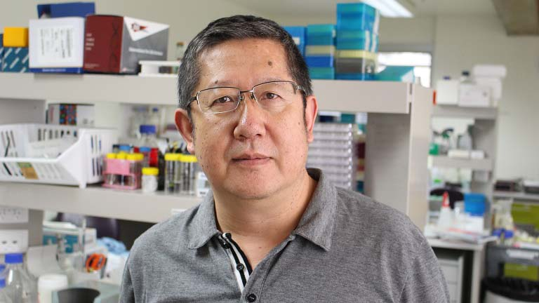 Professor Xu Dong Zhang - HMRI Cancer Program Leader