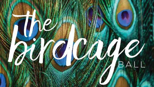 The Birdcage Ball