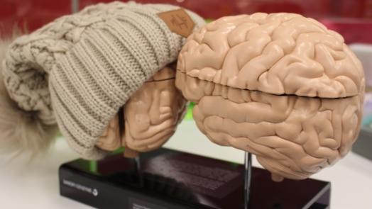 Brain Cancer Research