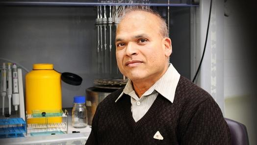 Professor Manohar Garg