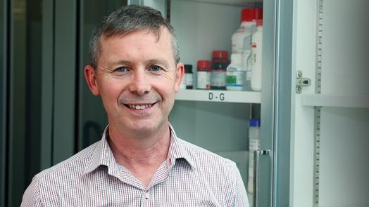 Professor Peter Wark