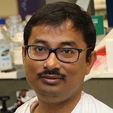 Dr Kaushik Maiti