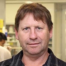 Prof Philip Hansbro
