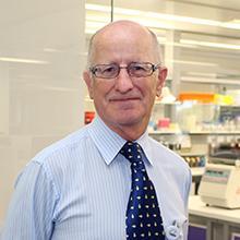 Professor Stephen Ackland | Co-Director of the HMRI Cancer Research Program