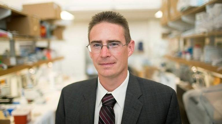 Professor Rob Knight